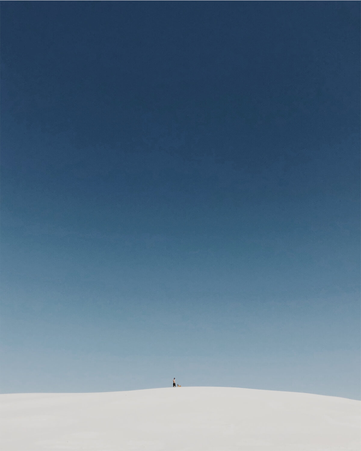 Man and dog standing on top of New Mexico sand dune