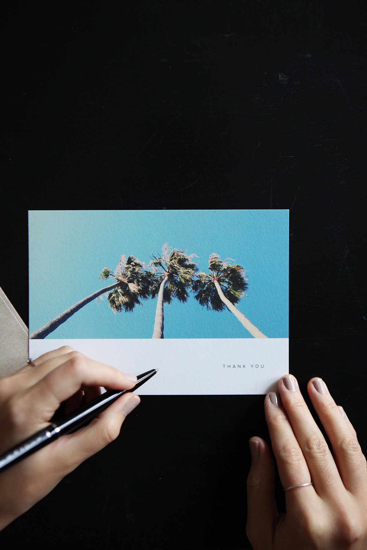 Thank you card with palm tree on front