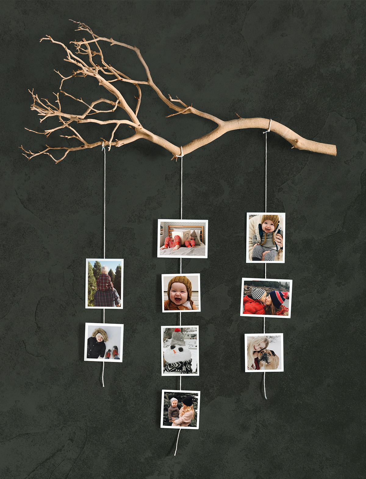 Photo prints hanging from branch attached to wall