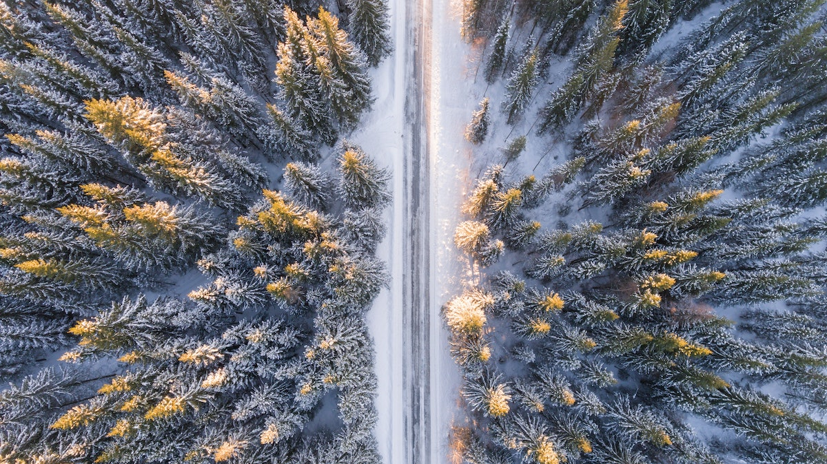Drone photo of snowy road splitting a forest of snow-covered trees