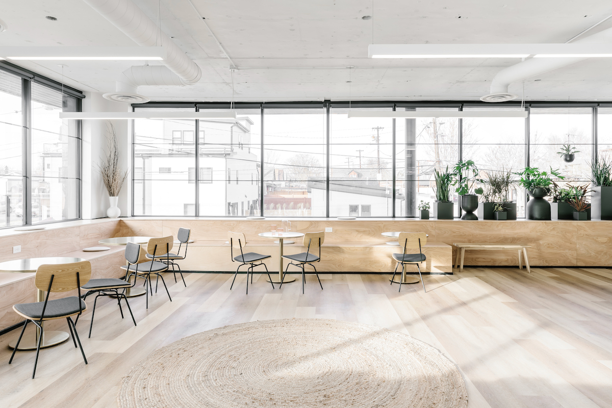 Office communal area flooded with natural light
