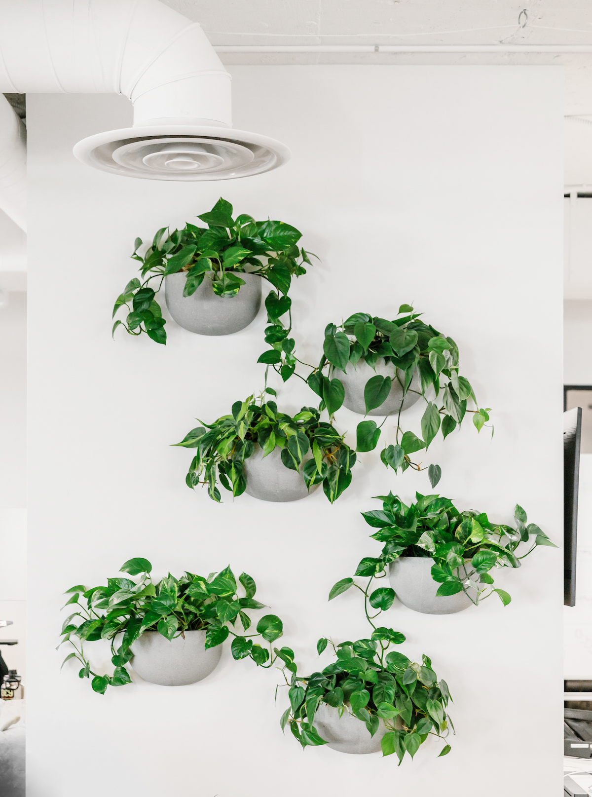 A living wall featuring potted plants down a column in the center of the Artifact Uprising office