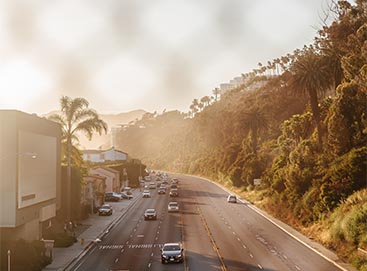 Coastal palm-tree-lined highway at sunset