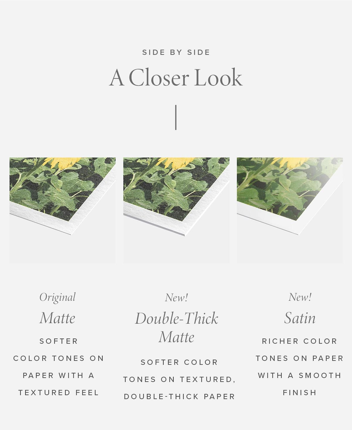 Comparison of matte, double-thick, and satin types of photo paper finishes