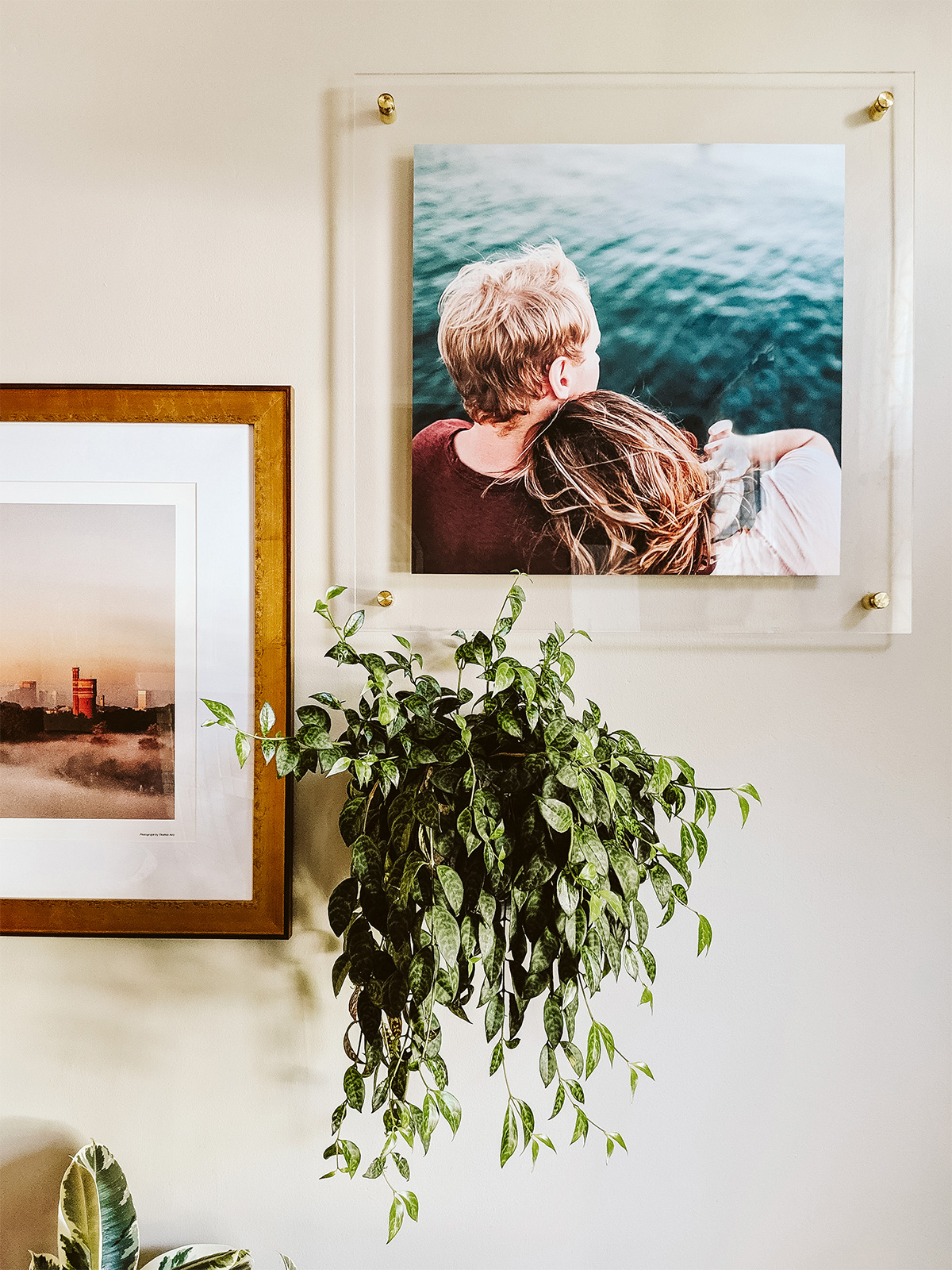 Small art wall created with staggered photo frames and wall-mounted plant