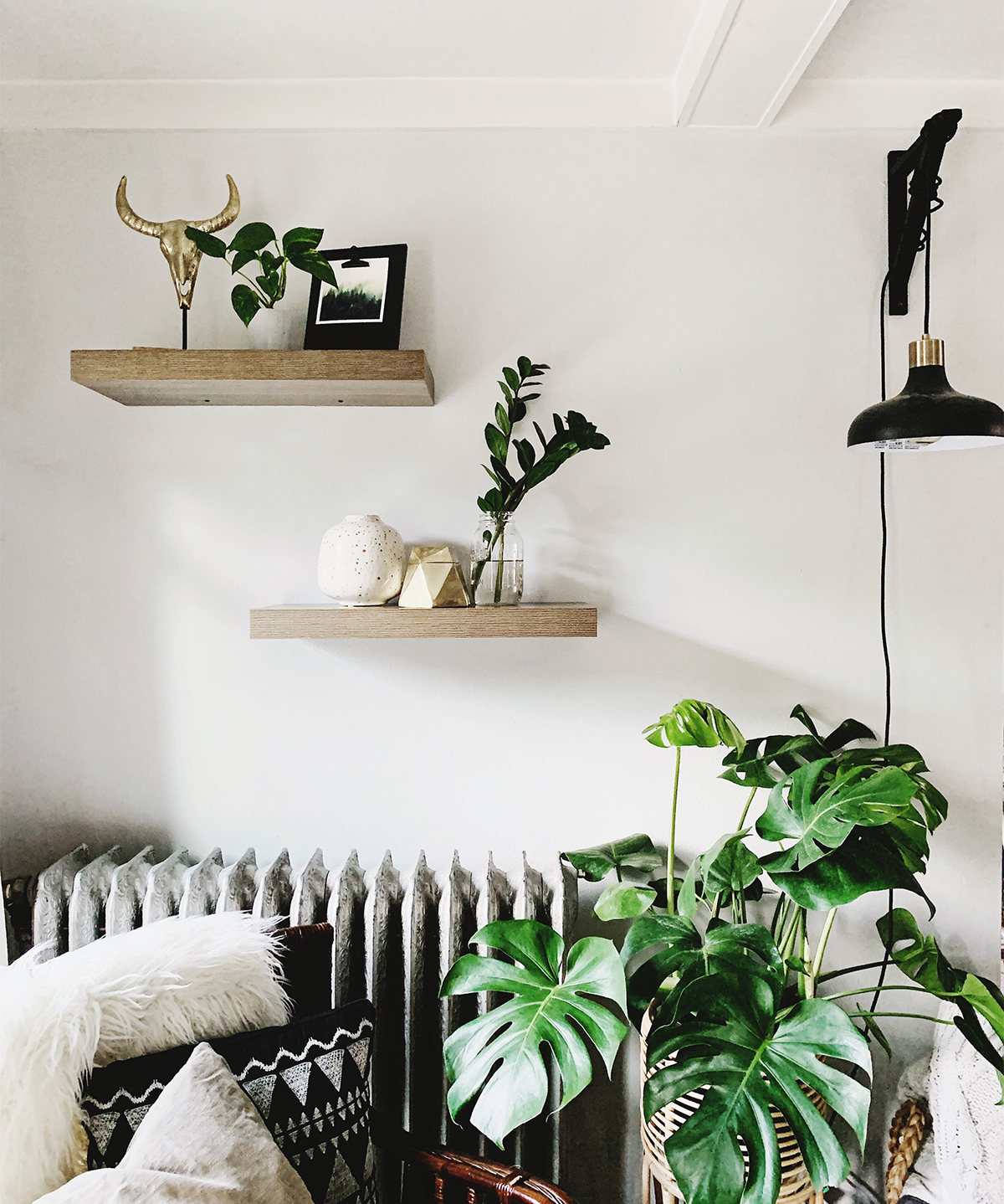 Photo by @kellybananatree of floating shelves next to Monstera plant