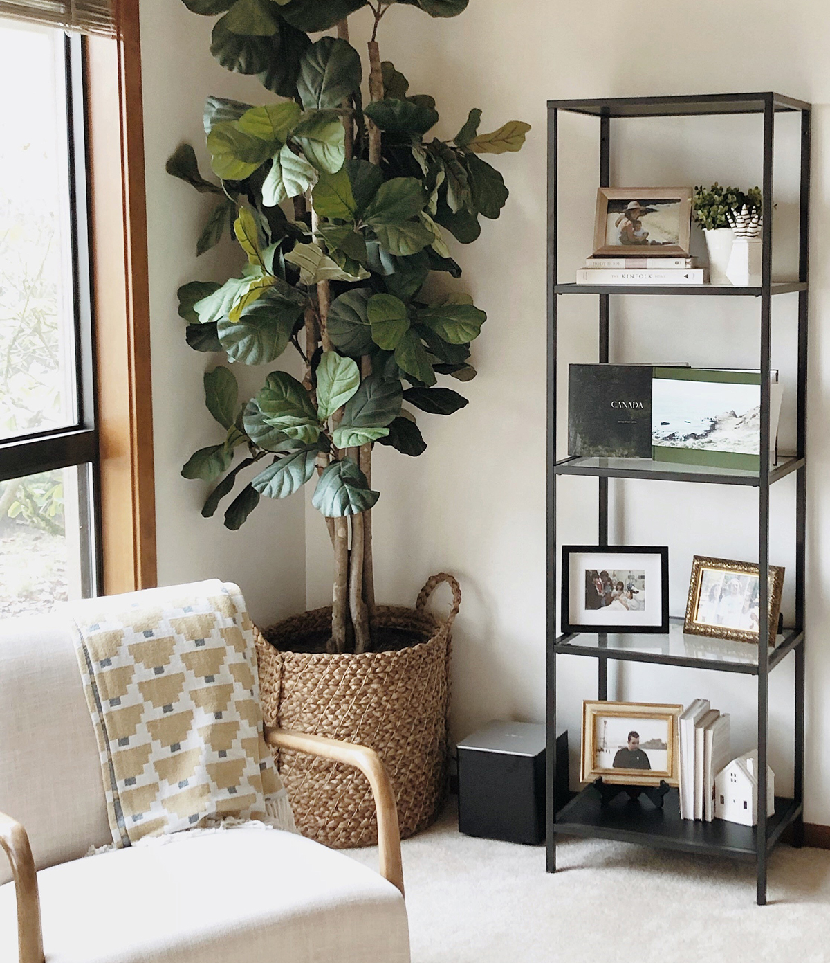 Multilevel shelf adorned with frames and photo books