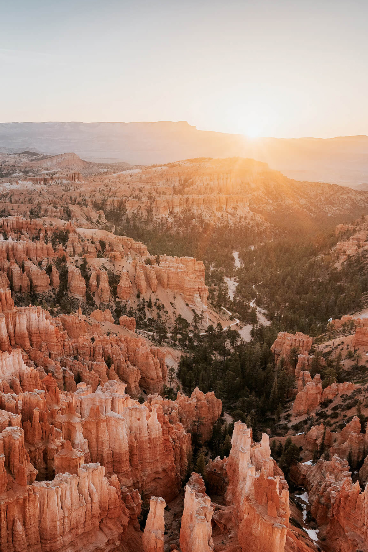 Photo of Renee Hehnel of golden hour in Bryce Canyon National Park
