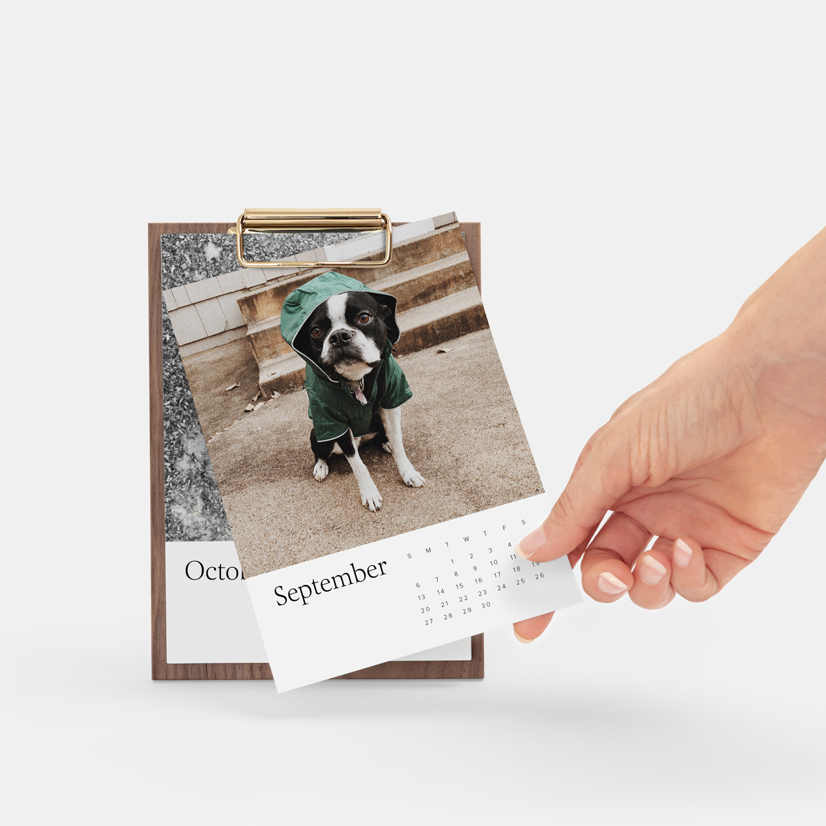 wood desktop calendar set to September featuring photo of cute dog wearing jacket