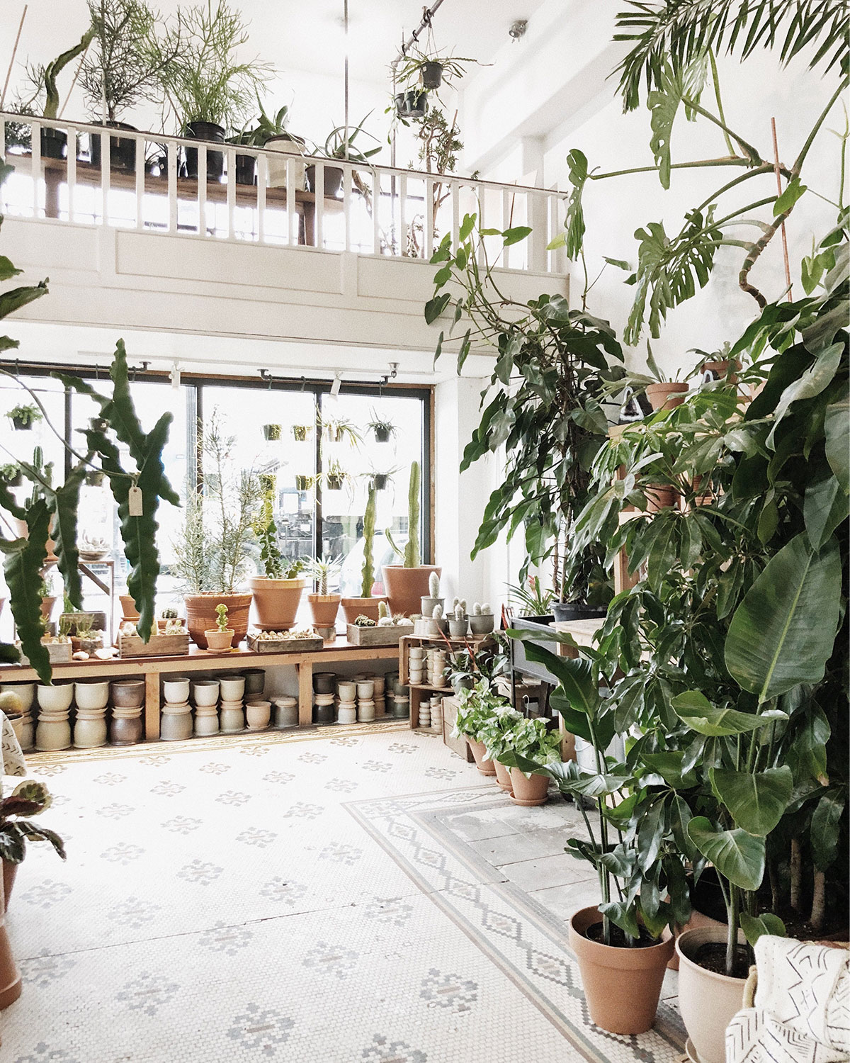 Inside of a small plant shop filled with greenery