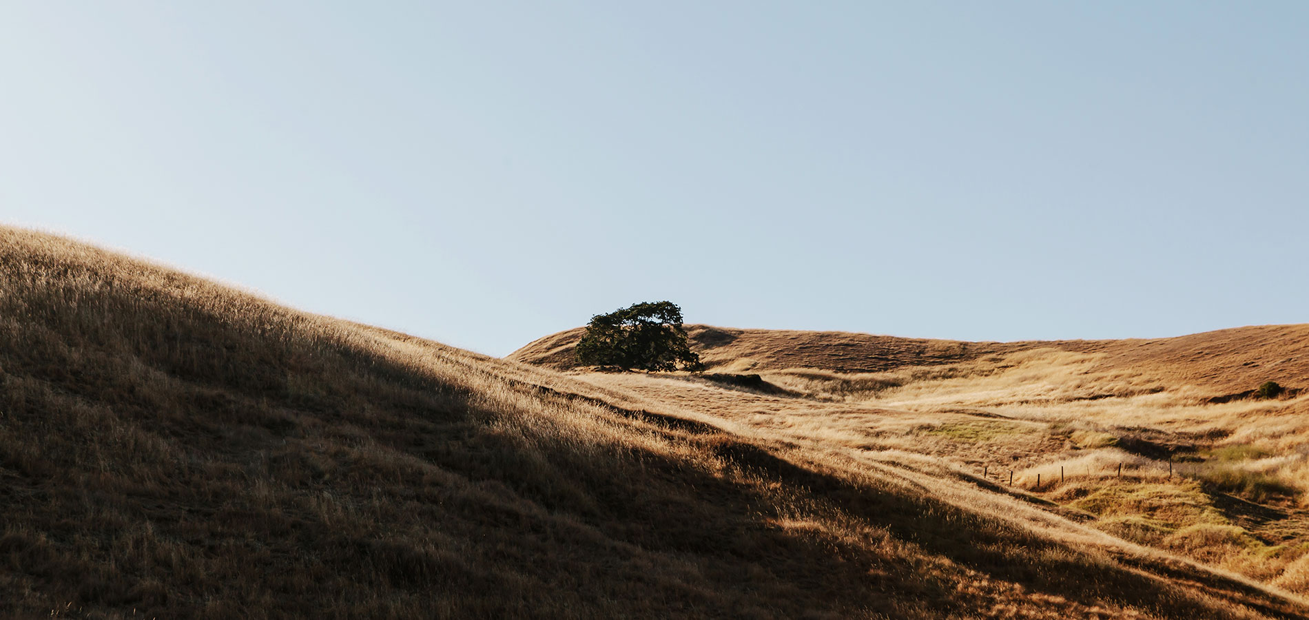 Sun hitting a golden hill off of a hiking trail