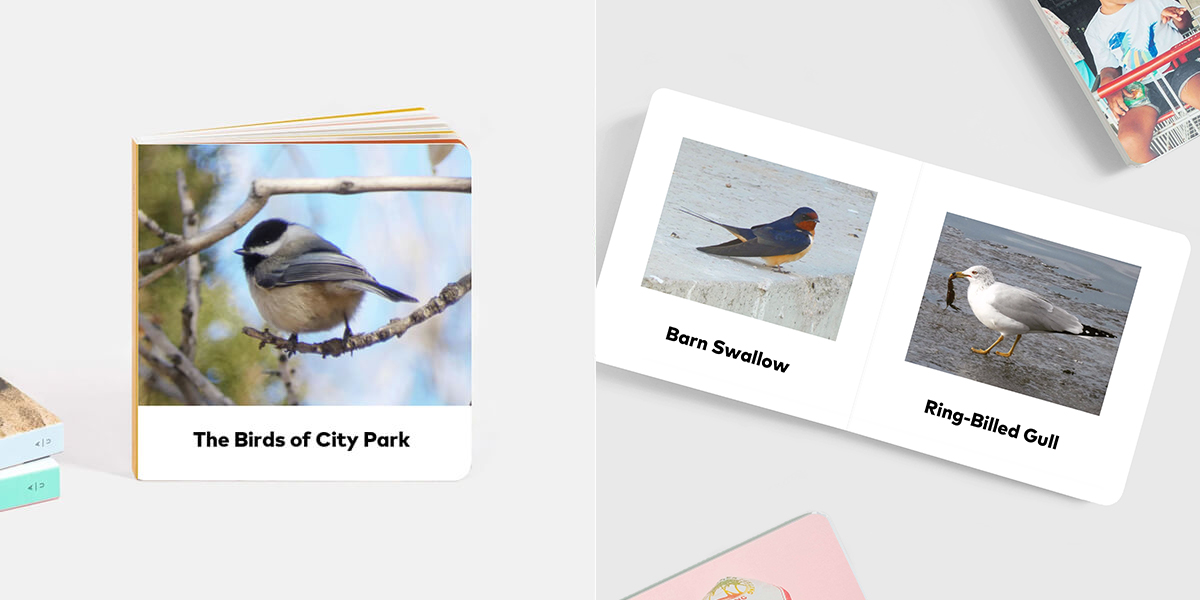 Board book with images and names of birds