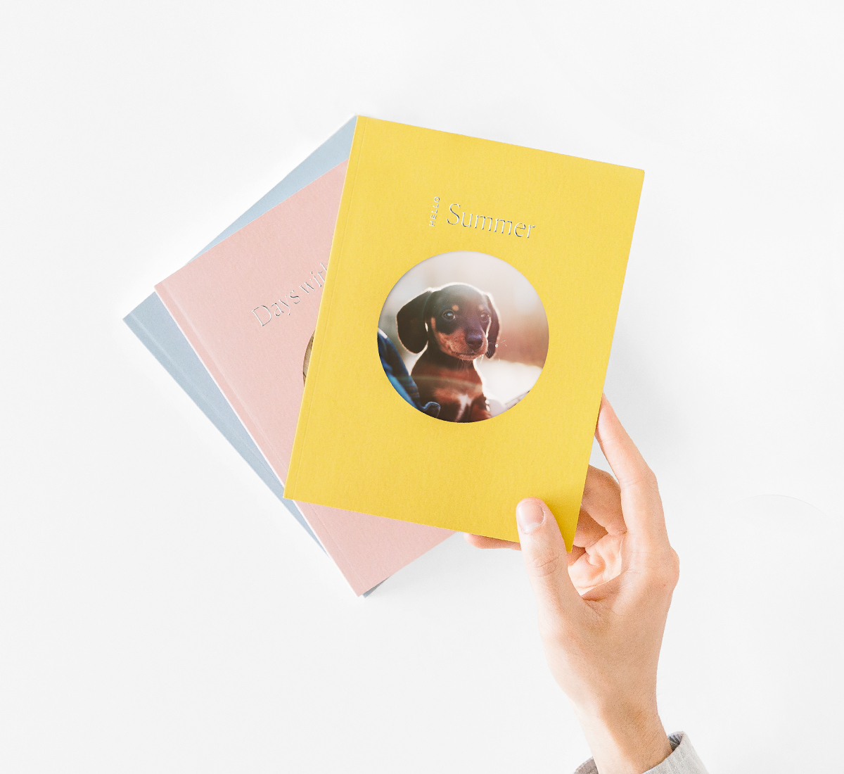 Yellow Color Series Photo Book with wiener dog on the cover