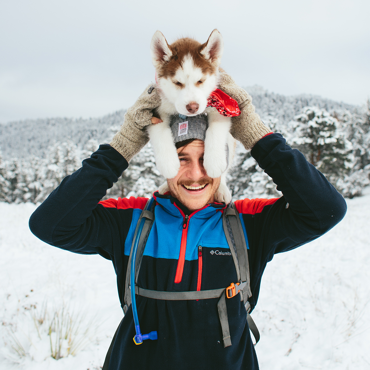 Man in snowy wilderness with husky puppy perched on his head