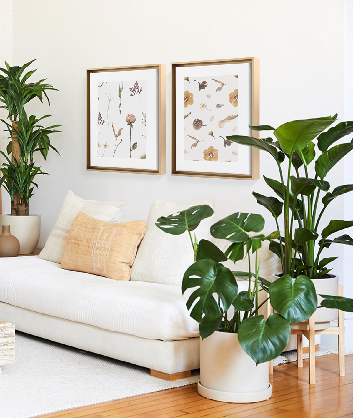 Framed Canvas prints of dried botanicals hanging above couch in between Dracena and other large plants