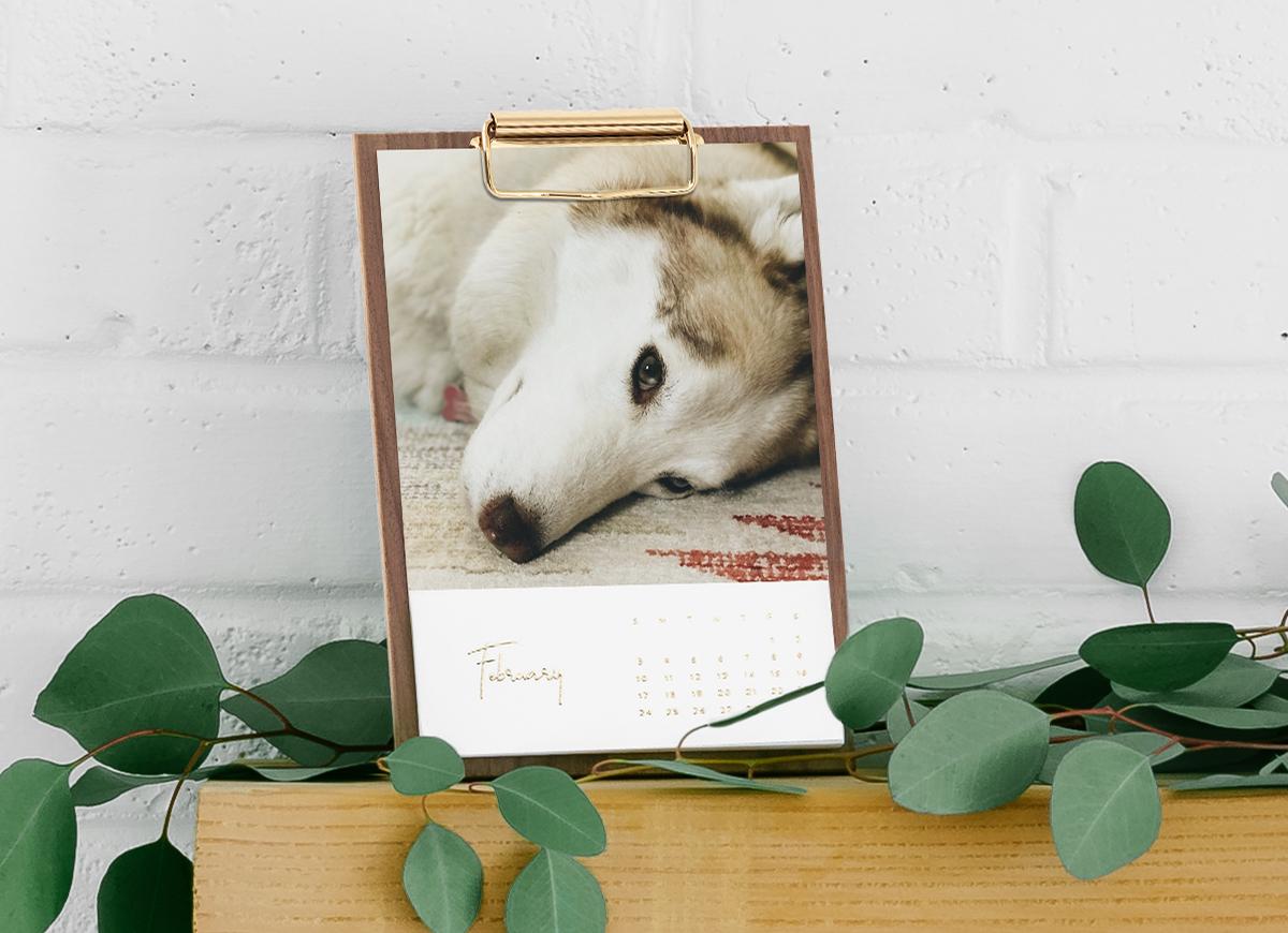 Artifact Uprising Wooden Desktop Photo Calendar featuring photo of a husky