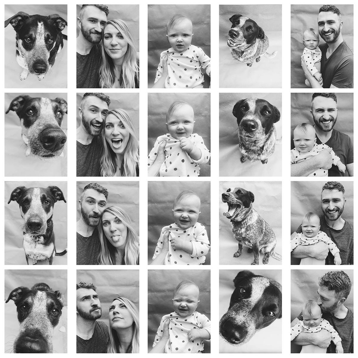 Grid of family, baby, and dog photos
