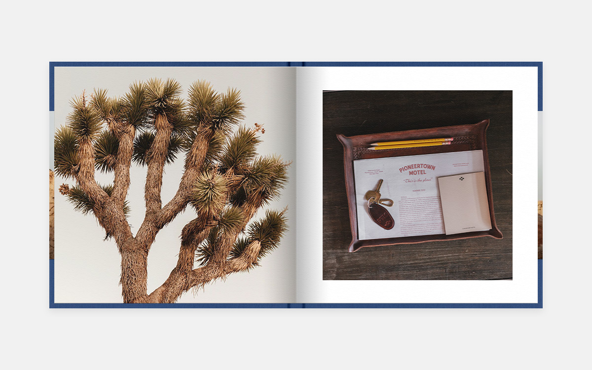 Scene-setting spread featuring exotic tree on left page and motel pamphlets on right