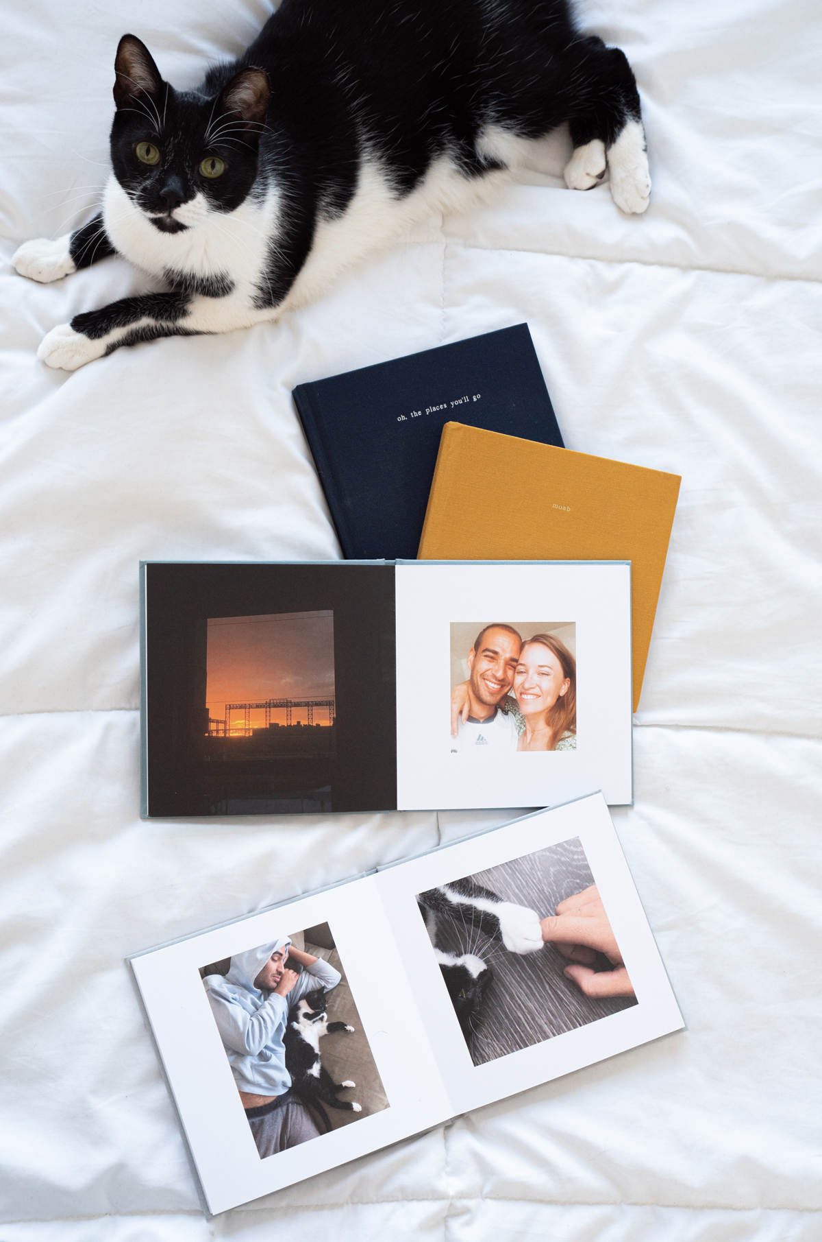 Artifact Uprising Everyday Photo Books on bed next to cat