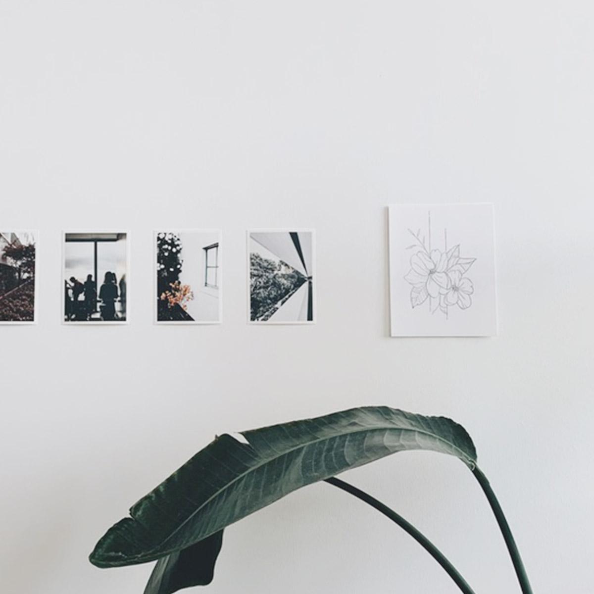 Artifact Uprising Everyday Photo Prints on wall above banana tree