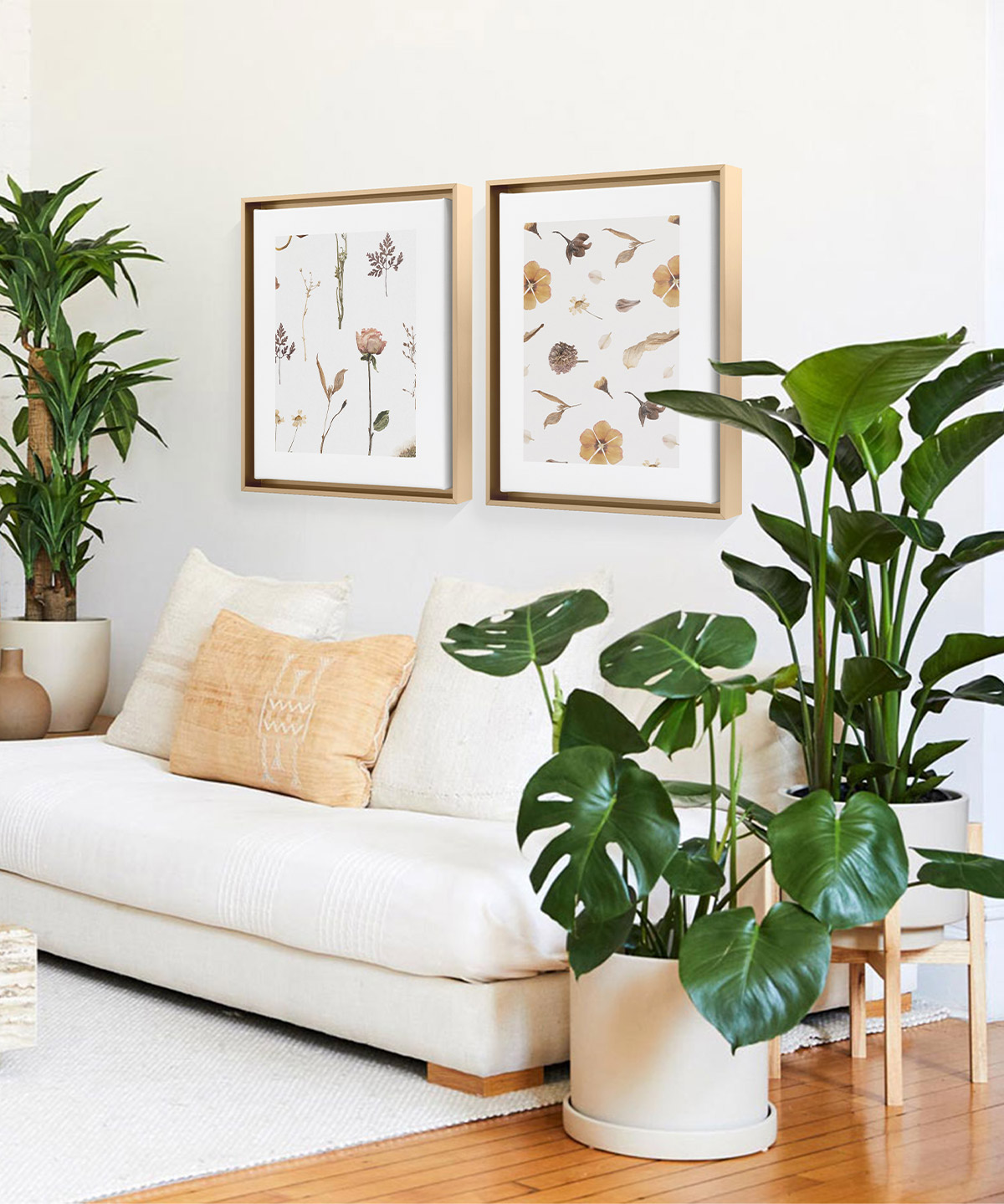 Artifact Uprising Framed Canvas Prints of dried botanicals hanging above white couch surrounded by plants