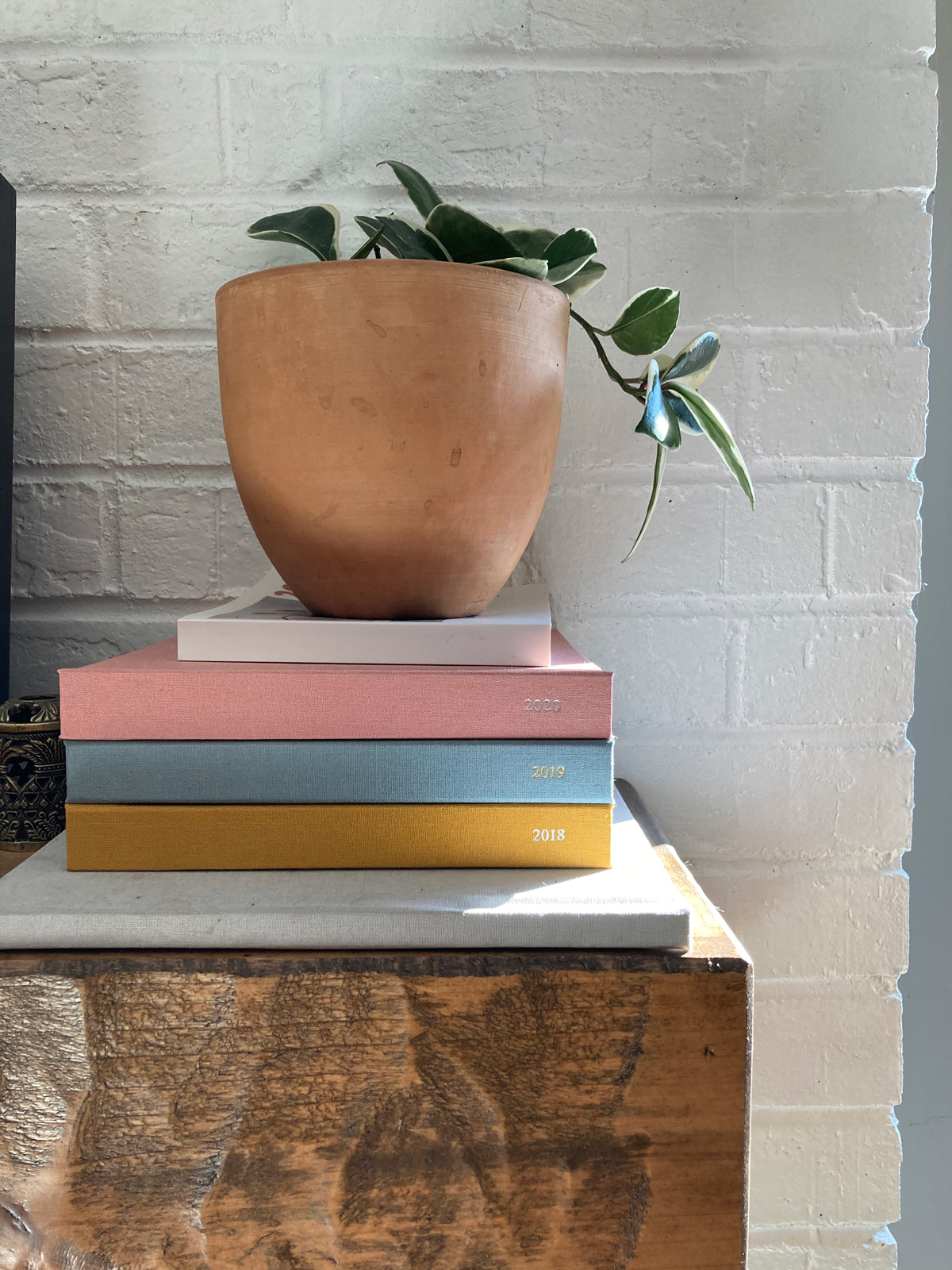 Colorful stack of photo books on a dresser under a plant
