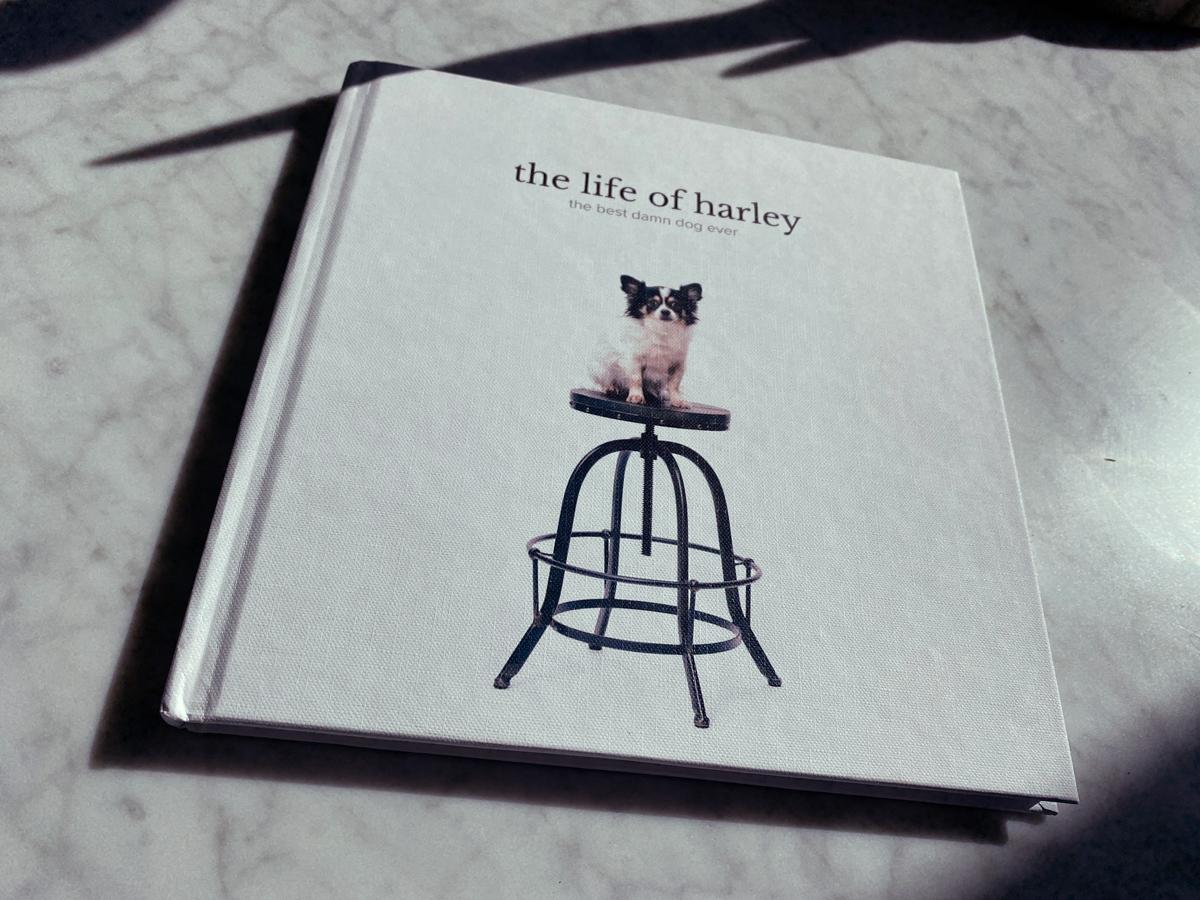 Photo book of dog named Harley