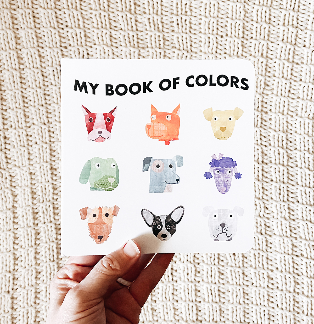 Hand holding up Artifact Uprising Baby Board Book titled My Book of Colors and featuring animal photos on cover